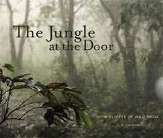 The Jungle at the Door