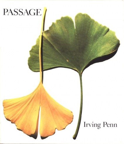 Irving Penn Passages