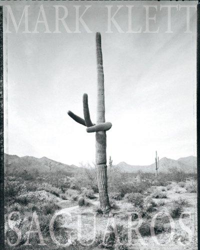 Mark Klett - Saguaros