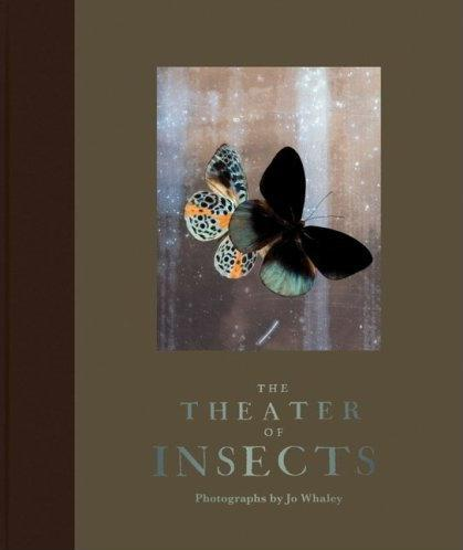 The Theater of Insects