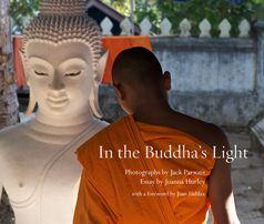 In-the-Buddha's-Light